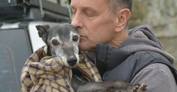 Σκύλος πήγε την τελευταία του βόλτα πριν την ευθανασία και εκατοντάδες άνθρωποι και ζώα βρέθηκαν κοντά του για να τον συνοδεύσουν