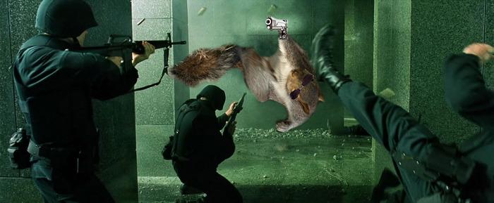 σκίουρος