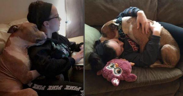 Σκύλος δεν σταματάει να αγκαλιάζει τη νέα του μαμά που τον πήρε από το καταφύγιο και τον πήγε στο νέο του σπίτι