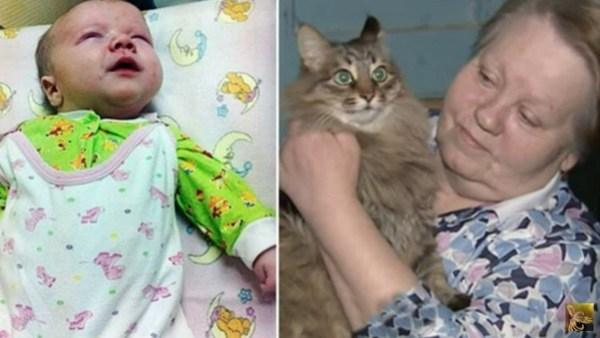 Παράτησαν το νεογέννητο μωρό τους στην παγωνιά παρατημένο μωρό μωρό για να πεθάνει από το κρύο. Προσέξτε όμως τώρα τι θα κάνει αυτή η Γάτα! γάτες Γάτα