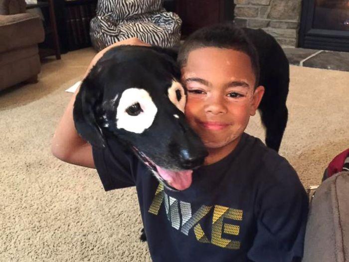 δερματική ασθένεια Αγόρι μισούσε τη δερματική του ασθένεια μέχρι που συνάντησε αυτόν τον σκύλο με την ίδια πάθηση