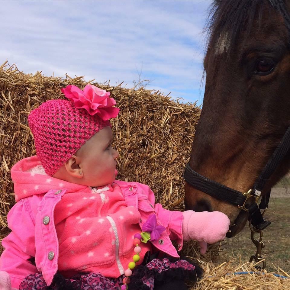 Μικρό κοριτσάκι αγαπάει να βγάζει το άλογο της βόλτες άλογο άλογα