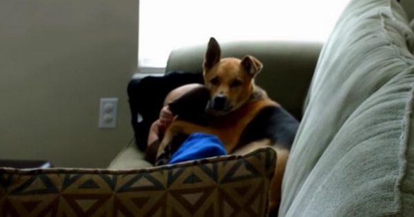Όταν είδε τον σκύλο της να αγκαλιάζει το μωρό, φοβήθηκε πως κάτι δε πάει καλά. Μόλις κατάλαβε ΤΙ συνέβη, έμεινε άφωνη!