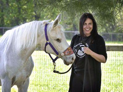 παρατημένο άλογο λύγισε από τη φρίκη που αντίκρισε... Βρήκαν ένα παρατημένο άλογο σε άθλια κατάσταση. Όταν το εξέτασε ο κτηνίατρος άλογο άλογα