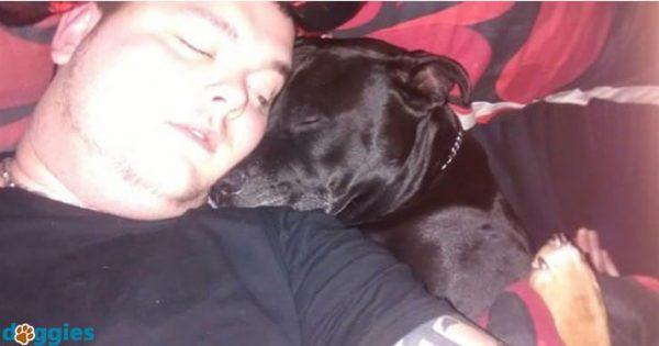 Έπασχε από κατάθλιψη και ήταν έτοιμος να αυτοκτονήσει. Τότε παρατηρεί ΤΙ έχει ο σκύλος του στο στόμα του και παθαίνει ΣΟΚ!
