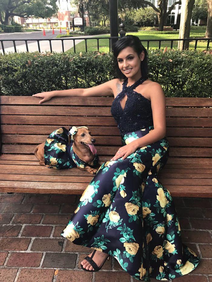 Dachshund 18χρονη φτιάχνει παρόμοιο φόρεμα με το δικό της για το dachshund της και κλέβει τις καρδιές όλων