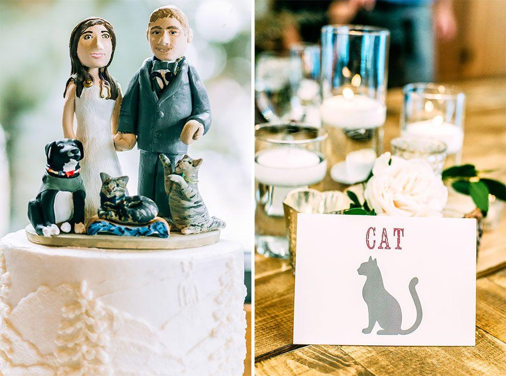 Δύο φιλόζωοι κτηνίατροι έφεραν τα διασωμένα γατάκια τους στον γάμο τους και οι φωτογραφίες είναι αξιαγάπητες διασωμένα γατάκια διασωμένα γάτες γατάκια Γάτα