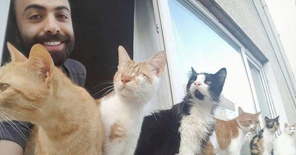Η πανέμορφη ιστορία ενός πιανίστα που έσωσε 9 αδέσποτες τραυματισμένες γάτες κι εκείνες έγιναν το πιο πιστό κοινό του!