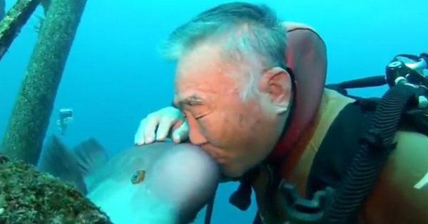 Ιάπωνας δύτης είναι φίλος με ένα ψάρι εδώ και 25 χρόνια