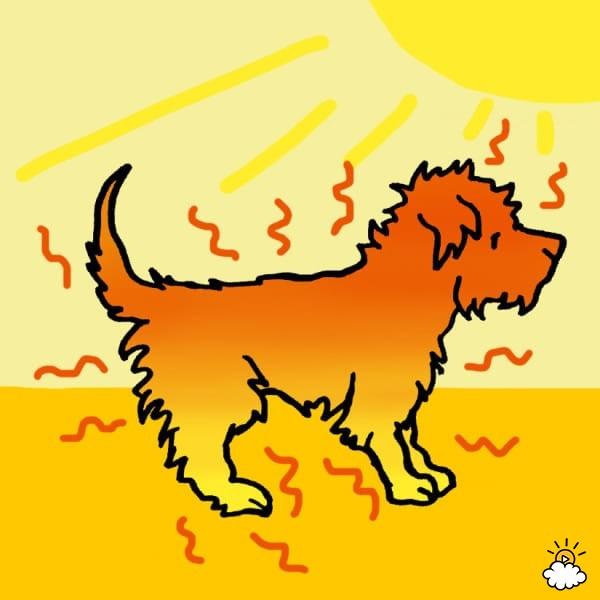 σκύλοι μέτρα προστασίας σκύλων θερμοπληξία σκύλων θερμοπληξία