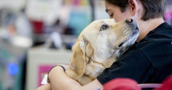 Αγκαλιά με τον αγαπημένο μου φίλο… Τον σκύλο μου