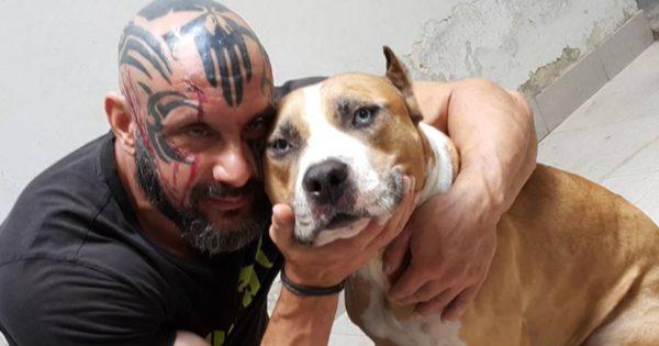 Ο Παναγιώτης κάνει τα πάντα στα άκρα – Αυτήν την εποχή σώζει κακοποιημένους σκύλους