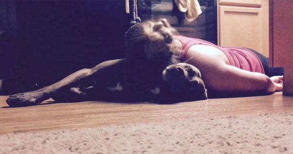 Εκπαιδευμένος σκύλος προστατεύει το κεφάλι ενός επιληπτικού ατόμου