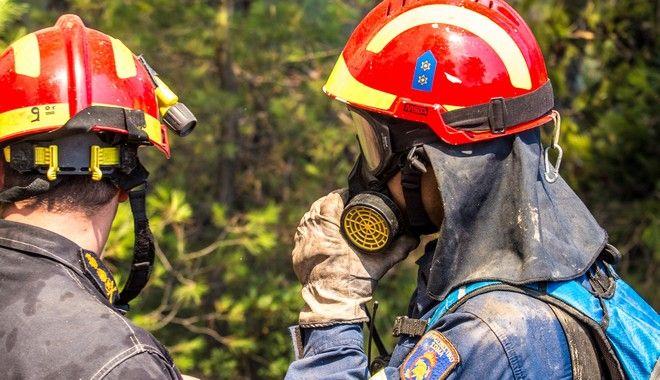 πυροσβέστης σώζει πουλάκια