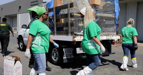 Βρέθηκαν 2000 ζώα σε άθλιες συνθήκες σε βιομηχανική αποθήκη στο Λος Άντζελες