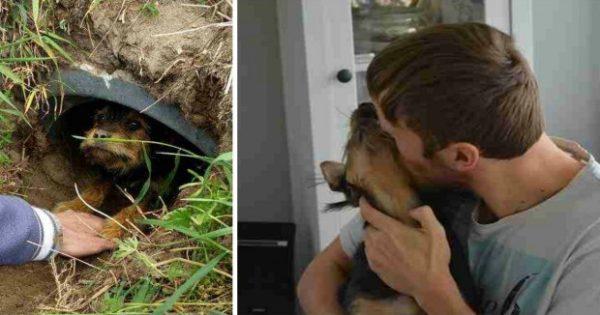 Σκύλος με σπασμένα πόδια ζούσε ολομόναχος μέσα σε ένα χαντάκι μέχρι που εμφανίστηκαν δύο καλοί άνθρωποι και τον έσωσαν