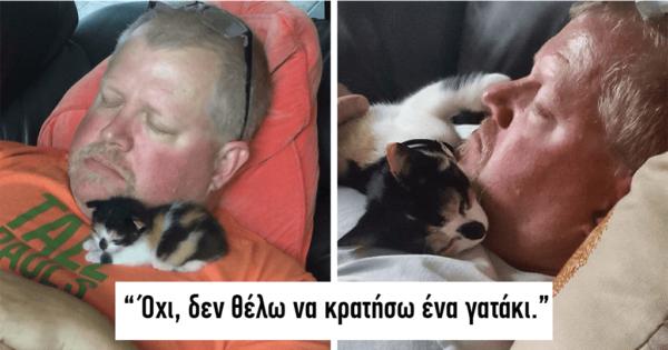 40 άνθρωποι που είπαν ότι δεν ήθελαν την γάτα αλλά στο τέλος την αγάπησαν