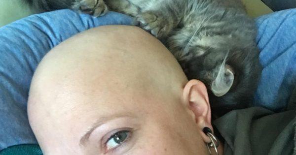 Έχασε τα μαλλιά της λόγω του καρκίνου αλλά η γατούλα της δεν την αφήνει μόνη