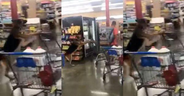 Αυτός ο σκύλος σέρνει καρότσι σε σούπερ μάρκετ…