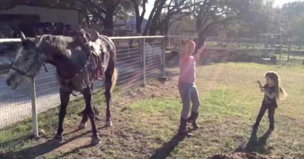 2 κοριτσάκια ξεκινάνε να χορεύουν μπροστά σε ένα άλογο, αλλά ΑΥΤΗ η κίνηση του αλόγου συγκλονίζει το διαδίκτυο!