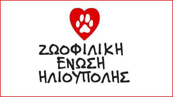 γιορτή για τα ζώα αγκαλιά