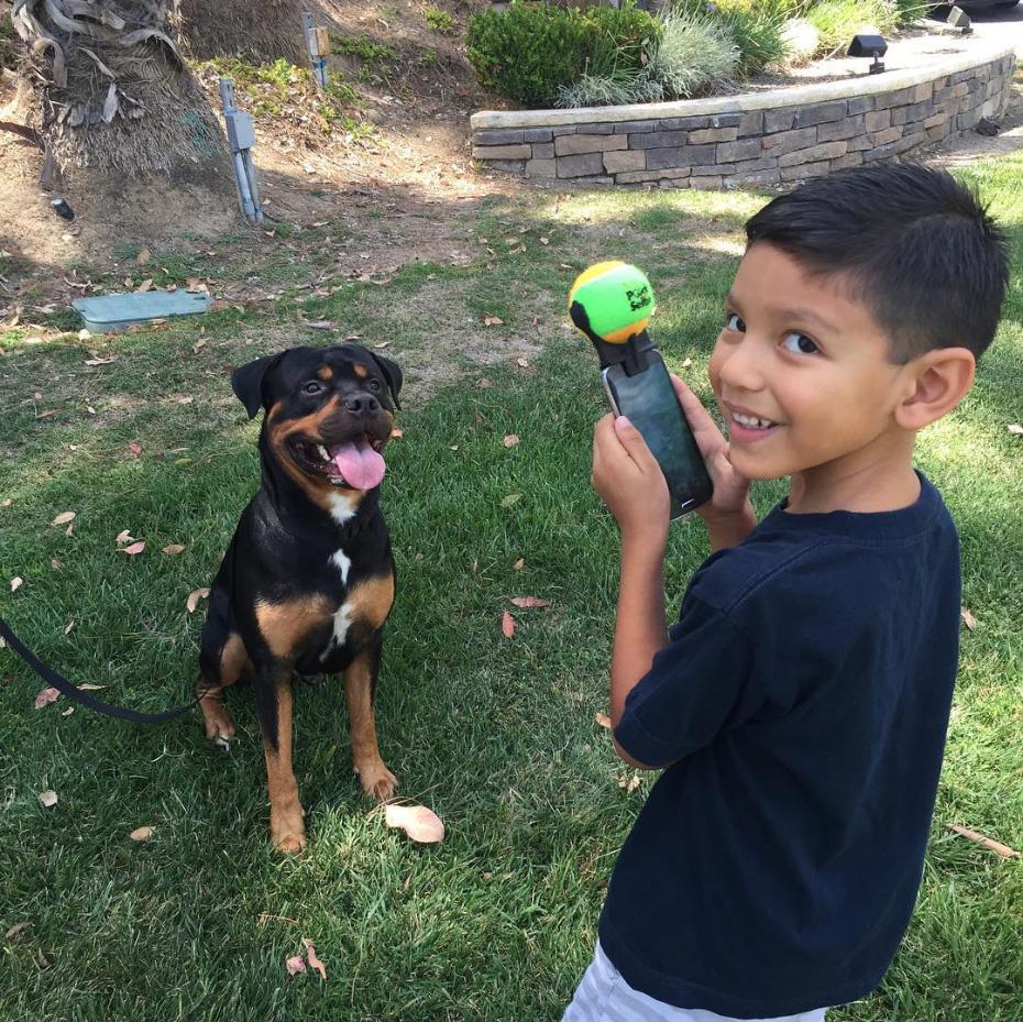 σκύλος σέλφι σέλφι με σκύλο αξεσουάρ για σελφι με σκύλο