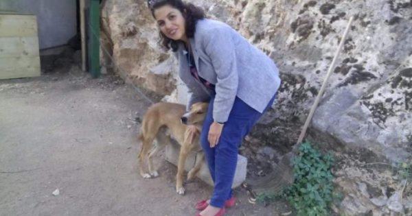 Γλίτωσε την ευθανασία και βρήκε την αγάπη στο Αρχαιολογικό Μουσείο Δελφών