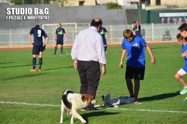 ποδοσφαιρόφιλοι σκύλοι ποδόσφαιρο