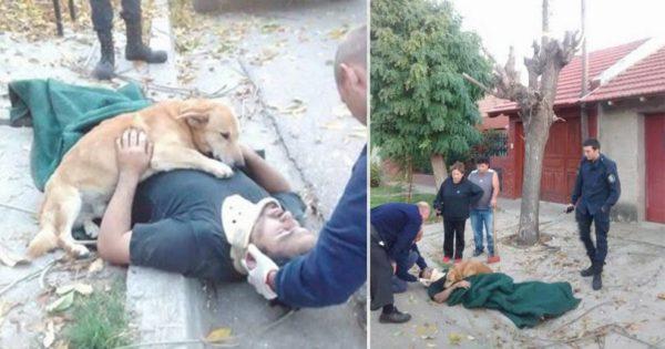 Σκύλος δεν αφήνει από την αγκαλιά του τον ιδιοκτήτη του που τραυματίστηκε από πτώση