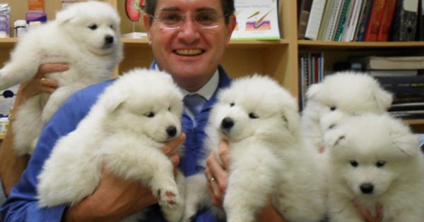 Θα σας φτιάξουν την ημέρα αυτές οι φωτογραφίες: Τα πλεονεκτήματα του να είσαι κτηνίατρος