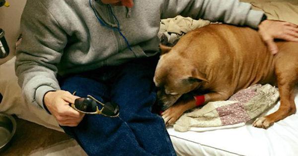 Θα δακρύσετε… Άστεγος άντρας αδυνατεί να πληρώσει για την νοσηλεία του ηλικιωμένου του σκύλου