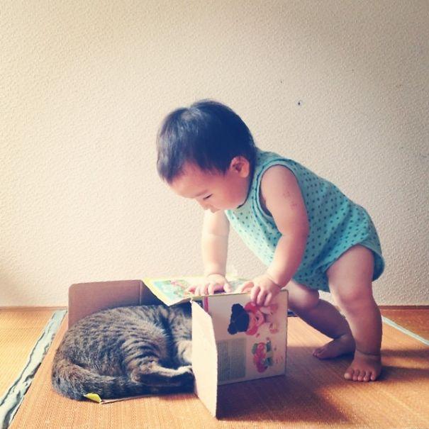 μωρό Γάτα