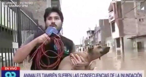 Δημοσιογράφος διακόπτει τη ζωντανή σύνδεση για να σώσει σκυλάκι από πνιγμό