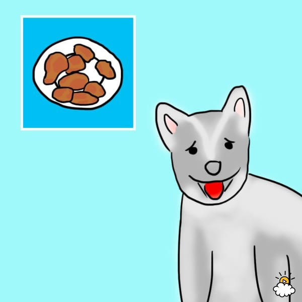 υγιεινά φαγήτα για τον σκύλο υγιεινά φαγητά σκύλοι τρόφες
