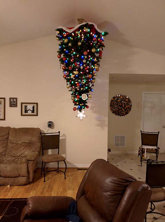 χριστουγεννιάτικο δέντρο κατοικίδια