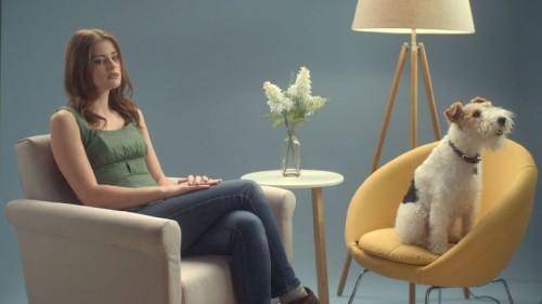 «Ο σκύλος είναι για μια ζωή, όχι μόνο για τα Χριστούγεννα»- Tα βίντεο που συγκινούν