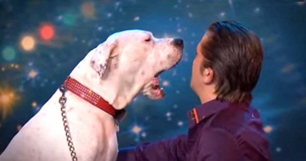 Oι κριτές τηλεπαιχνιδιού σοκαρίστηκαν όταν είδαν τον σκύλο του να κάνει αυτό πάνω στη σκηνή!