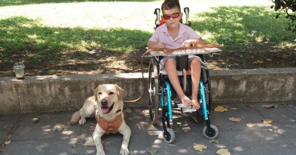 Ο μικρός Γιώργος και ο κολλητός του ο Μάικ, ο πρώτος σκύλος πολλαπλών βοηθειών στην Ελλάδα