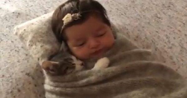 Νεογέννητο μωράκι κοιμάται μαζί με νεογέννητο γατάκι και γίνονται viral (video)
