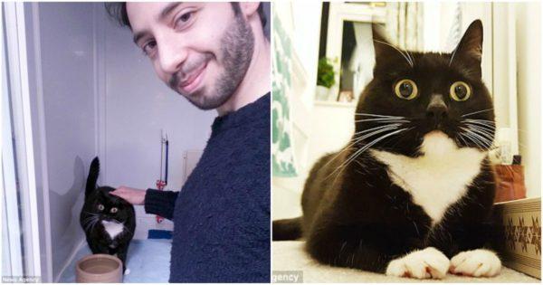 Γάτα με γουρλωμένα μάτια και μόνιμα ξαφνιασμένο ύφος γίνεται ο νέος αστέρας στο Twitter και έχει 30.000 ακόλουθους