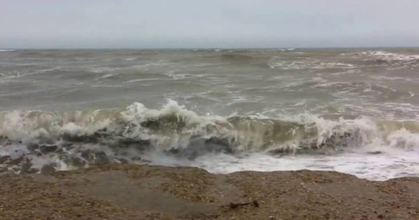Βρετανία: Βουτιά… αυτοθυσίας στα κύματα για να σώσει τον σκύλο της (βίντεο)