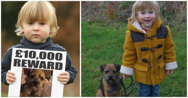 Αγοράκι που έχασε το κουτάβι του πριν τα Χριστούγεννα το βρήκε μετά την αμοιβή των 11.000€ που προσέφερε κριτής του X-Factor