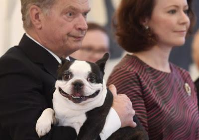 Λένου, ο Πρώτος Σκύλος της Φινλανδίας κλέβει την παράσταση