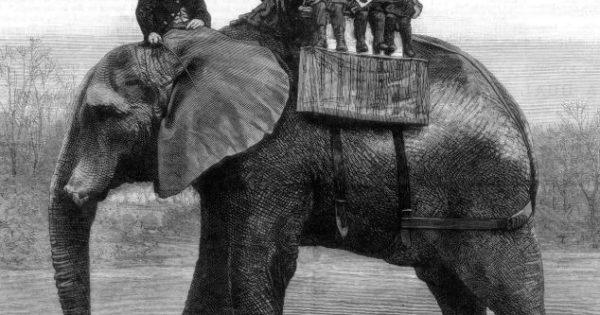 Η ζωή του αληθινού ελέφαντα Τζάμπο και ο τραγικός του θάνατος όταν συγκρούστηκε με τρένο. Μεγάλωσε σε ζωολογικούς κήπους και έγινε το διασημότερο ζώο του 19ου αιώνα