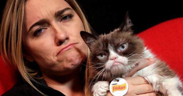 Διάσημη γάτα κέρδισε δικαστικά 710.000 $ από εταιρεία