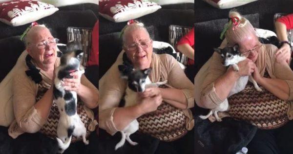 Γιαγιά κλαίει από συγκίνηση όταν τα εγγόνια της της έκαναν δώρο ένα κουτάβι