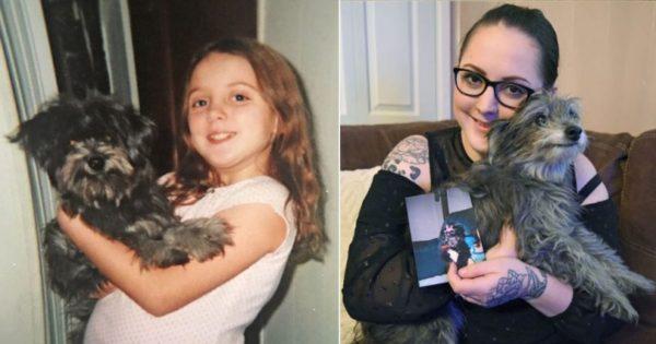 Υιοθέτησε 11χρονη σκυλίτσα επειδή της θύμιζε το κουτάβι που έχασε μικρή. Τελικά ήταν το ίδιο σκυλί