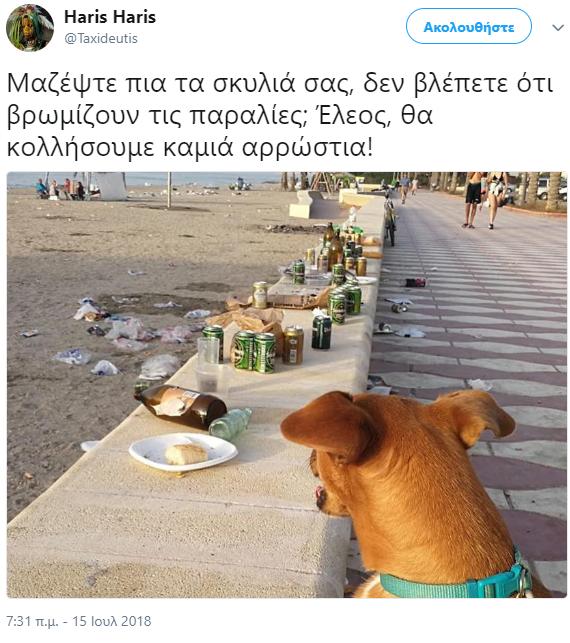 Σκύλος παραλία