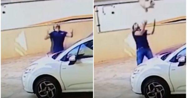 Άντρας έπιασε σκύλο που έπεφτε από τον ένατο όροφο και του έσωσε τη ζωή